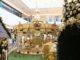 Navidad Costa Urbana Shopping
